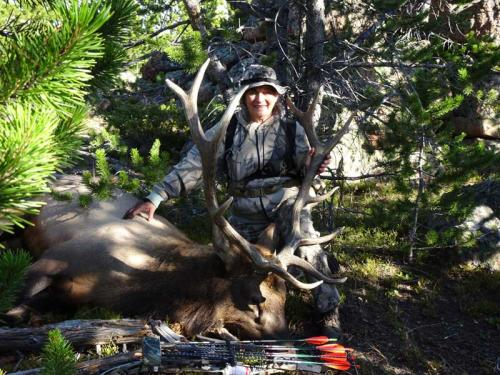 Susan Barrett Wyoming Elk